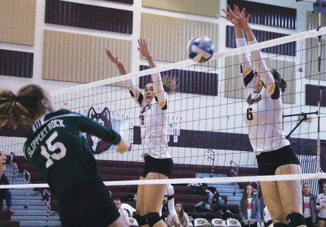 Volleyball sweeps Lock Haven 3-0